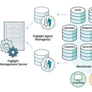 Cách thức hoạt động của sản phẩm Foglights for Database
